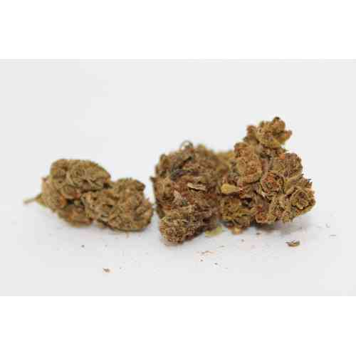 Black Domina legales Weed