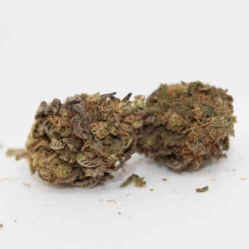 Sweet Purple CBD Bud