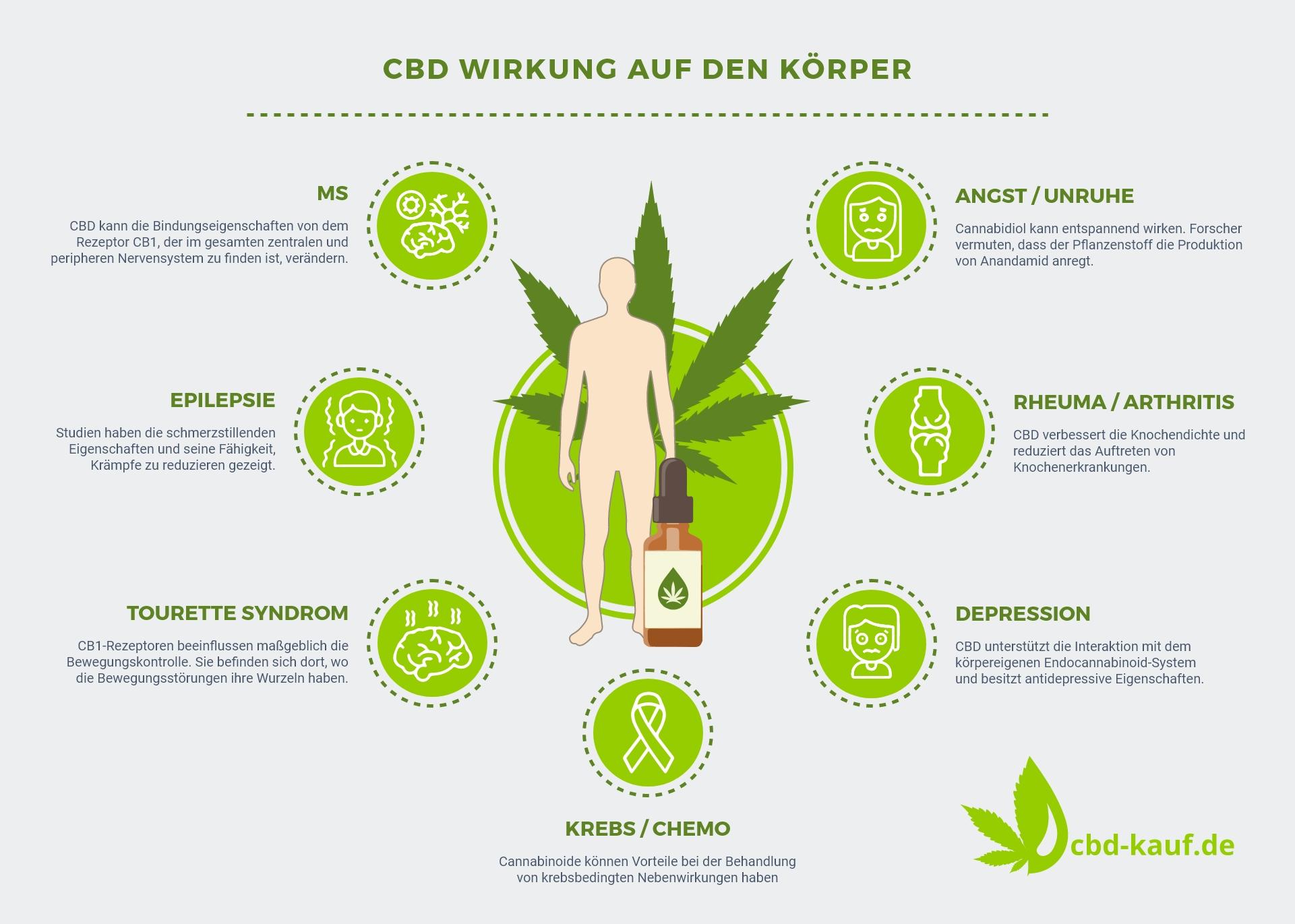 Infografik-CBD-Wirkung-Koerper